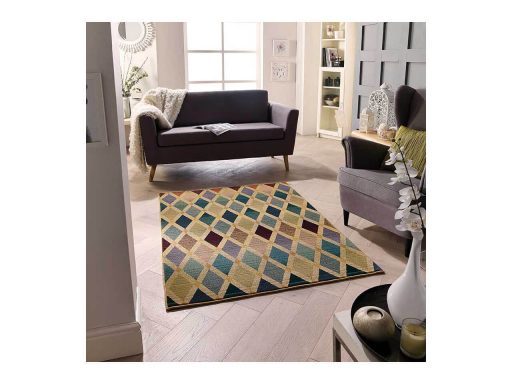 Apollo 638M Rug 02 Roomset